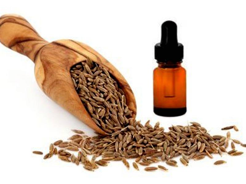 Cumin seed oil Essential Oil